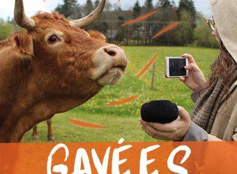 «Gavé.e.s». Les éleveurs bretons à l'épreuve de la transition écologique.